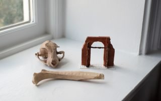 A rib, cat skull, and miniature archway, created from three-dimensional scans